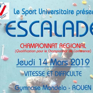 ESCALADE : Championnat Régional