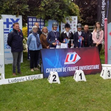 Equitation : Championnat de France Universitaire